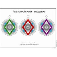 L'INDUCTEUR DE MULTI PROTECTION