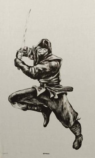 Poster Ninja en tissu