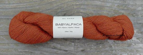 Babyalpaca Rouille (n°38)