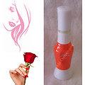 Stylo Nail Art Orange Intense vernis dessins sur ongles Yes Love