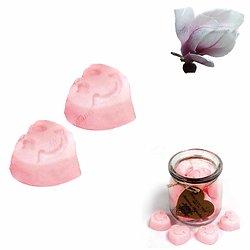 Fondant cire de soja Magnolia Japonais mélange et huile parfumée