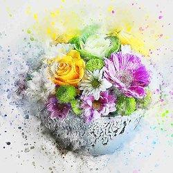 Box bouquet ou création fleurs en savon avec ou sans abonnement