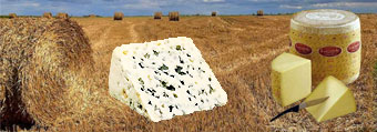 aveyron-plateaux-fromages.jpg