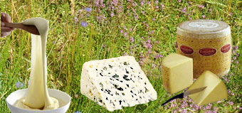 famille-fromage-aveyron-aub.jpg