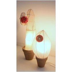 Cactus lumineux Forme Ogive