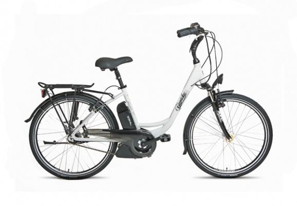 Le vélo électrique BUZIBI Gépida Reptila 900 LDS U