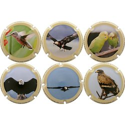 Quatresols - Les Oiseaux