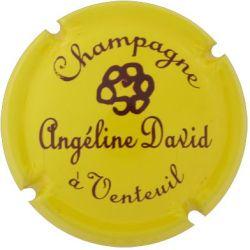 DAVID ANGELINE