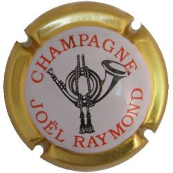 RAYMOND JOEL