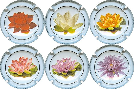Cheurlin Veuve - Fleurs de Lotus