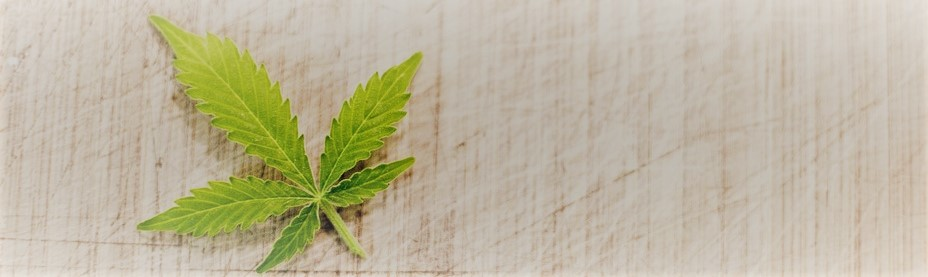 marijuana-3065621_960_720_3.jpg