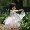 Déguisement fille Robe de fée Rose & Or - 5/6 ans