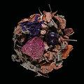 Thé bio - Les Infuz' - Infusion Sunset - Doypack Vrac 70g
