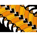 Puzzle 1000 pièces Hummingbird - Toucan Toucan