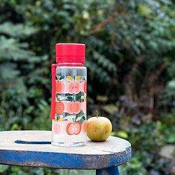Gourde enfant pomme vintage 600 ml