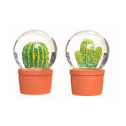 Boule à neige Cactus
