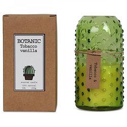 Bougie parfum tabac & vanille Botanic