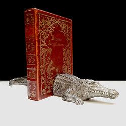 Serre Livres déco Crocodile