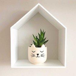 Mini cache Pot Chat endormi