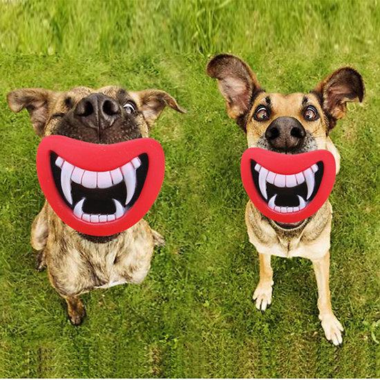Jouet pour chien - Jouet à mordre Dents de vampire
