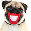 Jouet pour chien - Jouet à mordre Smile