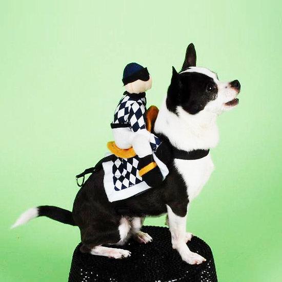 Déguisement pour chat ou chien - Harnais costume de Jockey