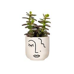Mini cache Pot Visage abstrait