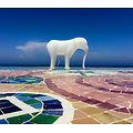 LOW-RES ELEPHANT par Richard Hutten
