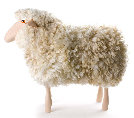 SHEEP RECONDITIONNE
