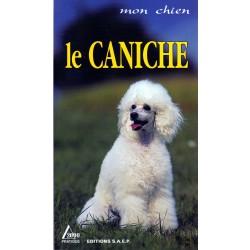 MON CHIEN, LE CANICHE