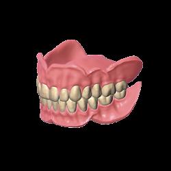 Exocad - Module Full Denture
