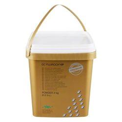 GC - Fujirock Plâtre Blanc 4kg
