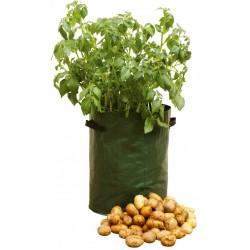 Saca'patates Ecovi®