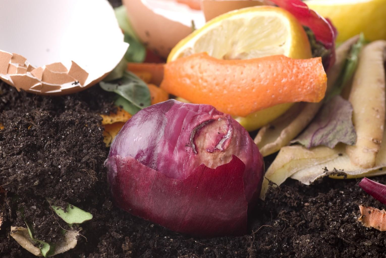 compost-engrais-naturel.jpg