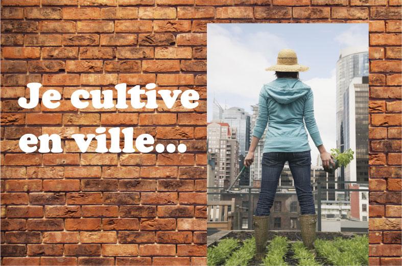 Cultiver en ville agriculture urbaine