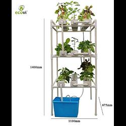 Système Hydroponique  HYDRO1 3 étages Ecovi®