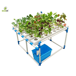 Kit Hydroponique  HYDRO3 1 table Ecovi®
