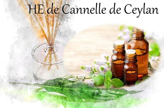 HE de Cannelle de Ceylan