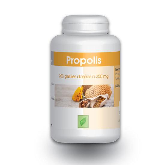 Gélules propolis purifiée : 250 mg