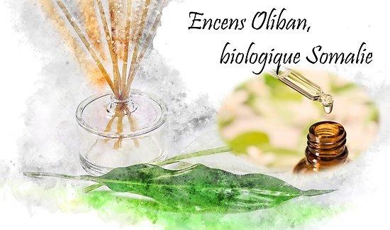 HE Encens Oliban, biologique Somalie