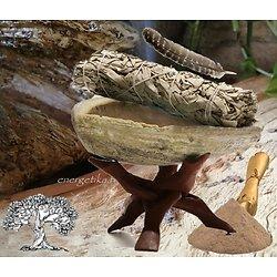 Coquille d'ormeau  sauge avec triangle de support Cobra.