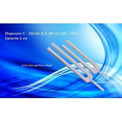 Diapasons C - 256 Hz & G 384 Hz (DO - SOL)
