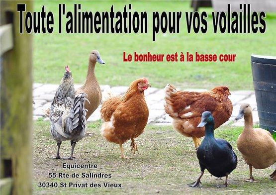 Alimentation volailles et animaux de la ferme