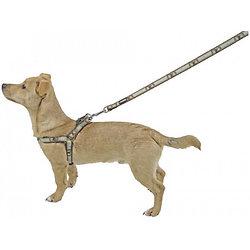 Harnais pour chien Wild Life