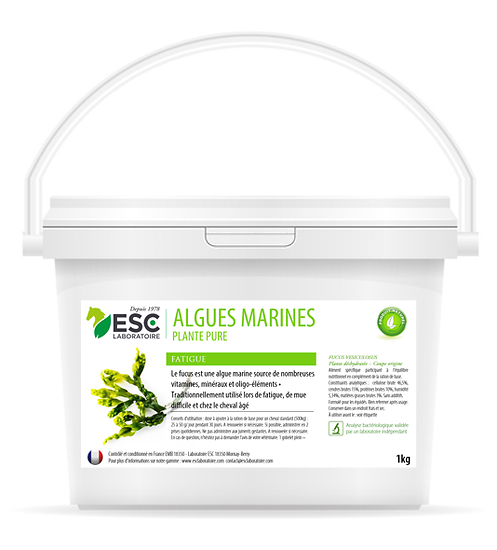 Algues Marines – Fatigue et baisse de forme cheval – Plante pure ESC 1kg