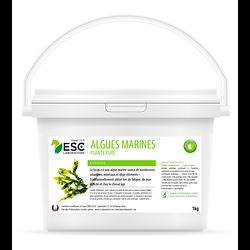 Algues Marines 1kg