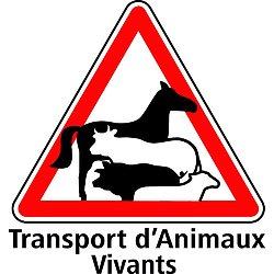 Panneau Transport Animaux 20x20cm