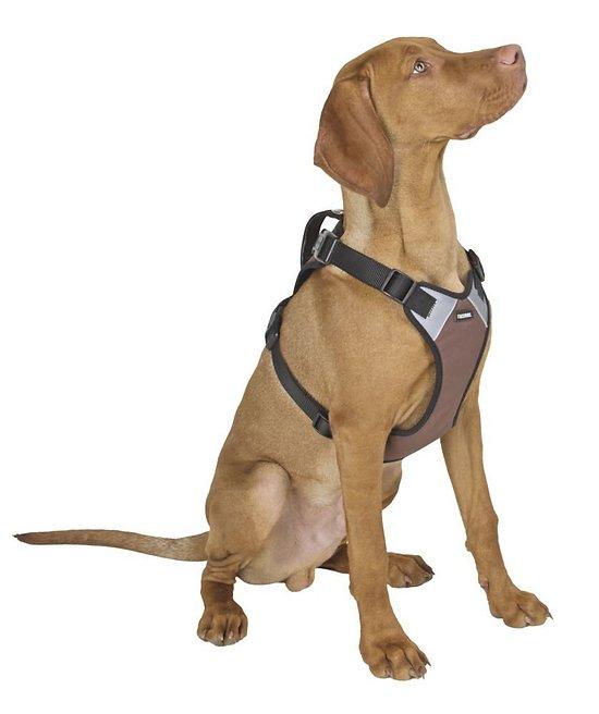 Harnais chien Pulsive 62/85cm 72-96cm