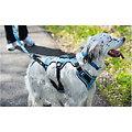 I-DOG Harnais Confort Bleu/Gris