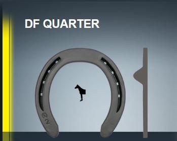 DF_QUARTER.JPG